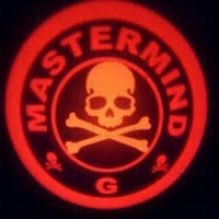 Внешняя подсветка дверей с логотипом Master Mind 5 W
